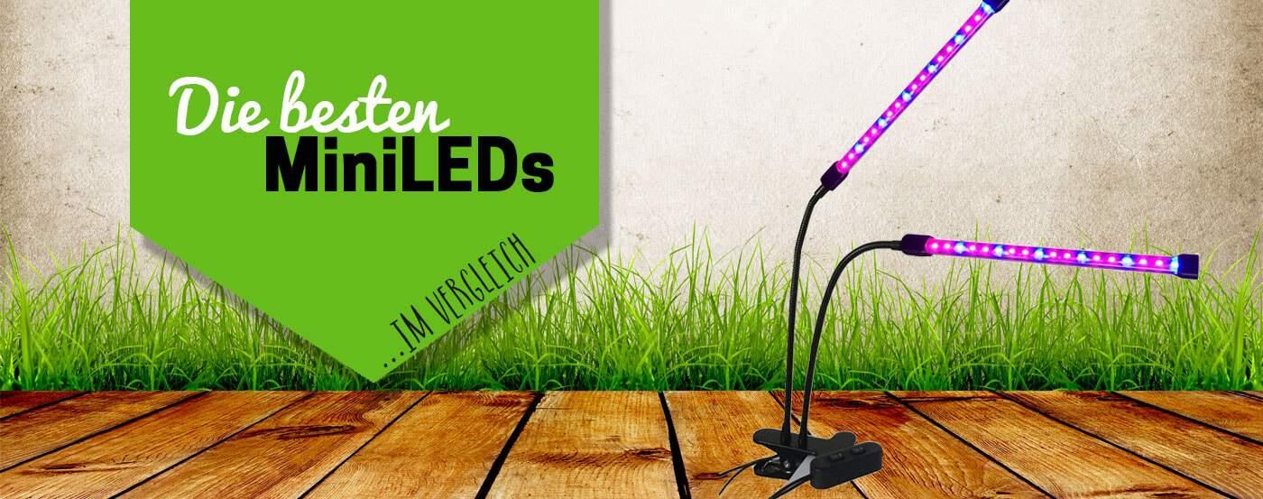 Die top 5 der besten mini led pflanzenlampen unser for Grow lampen kaufen
