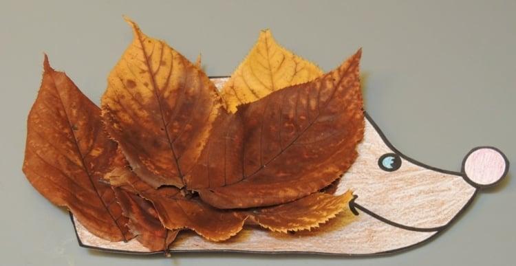 ᐅ Wohin Mit Dem Herbstlaub ᐅ Was Du Mit Dem Laub Anstellen Kannst