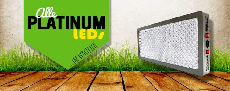 Platinum LED Grow Lampen Test