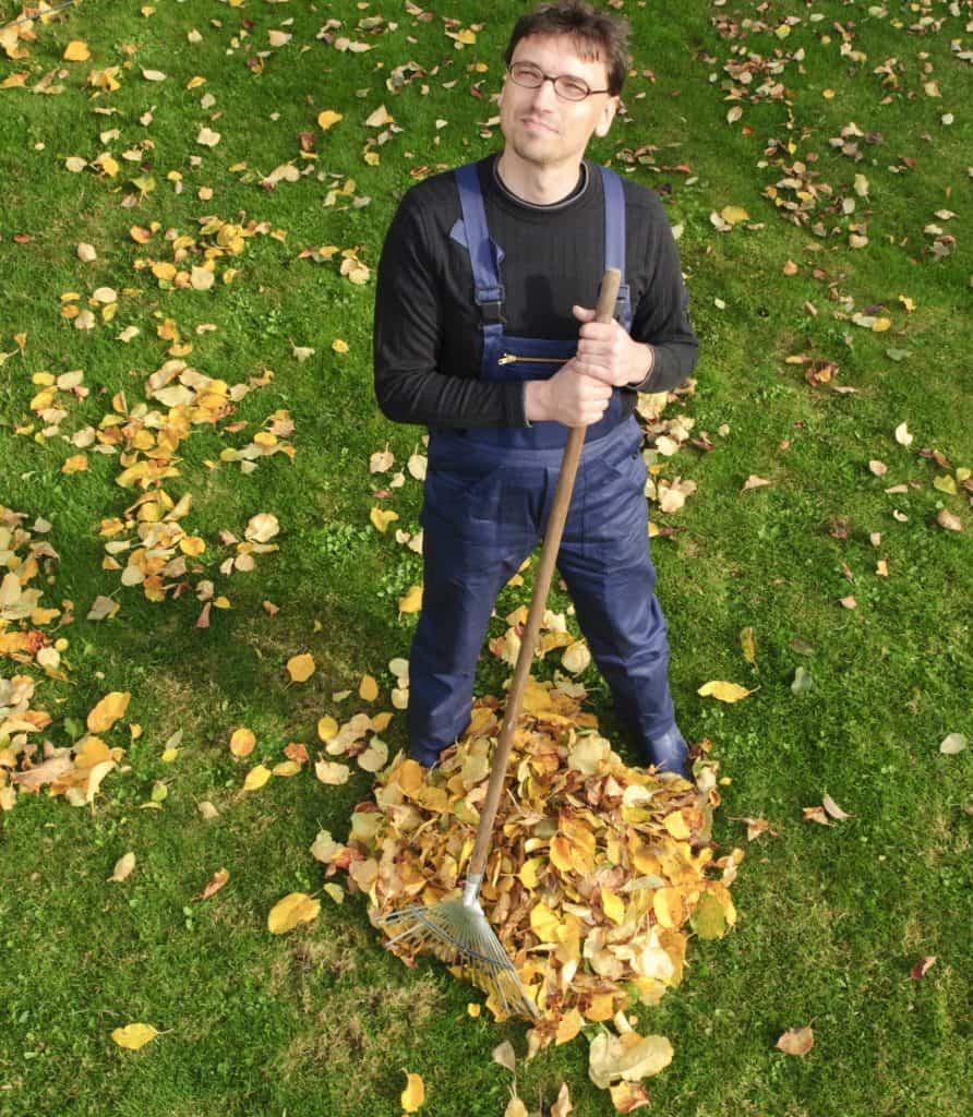 Mann sammelt Laub auf Rasen