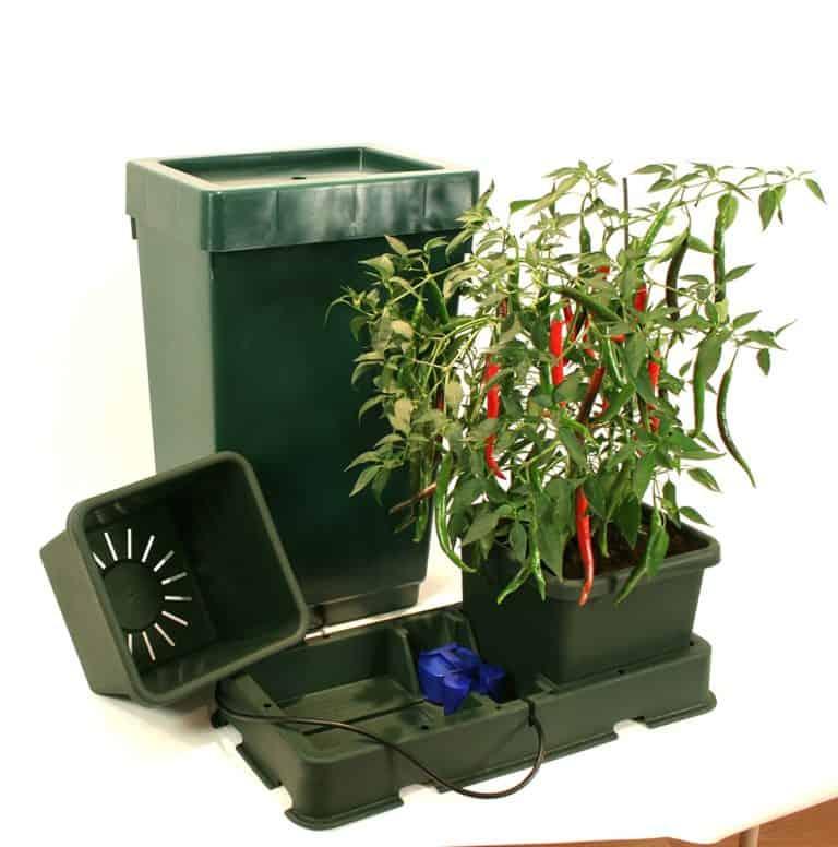 Easy2Grow automatische Bewässerung