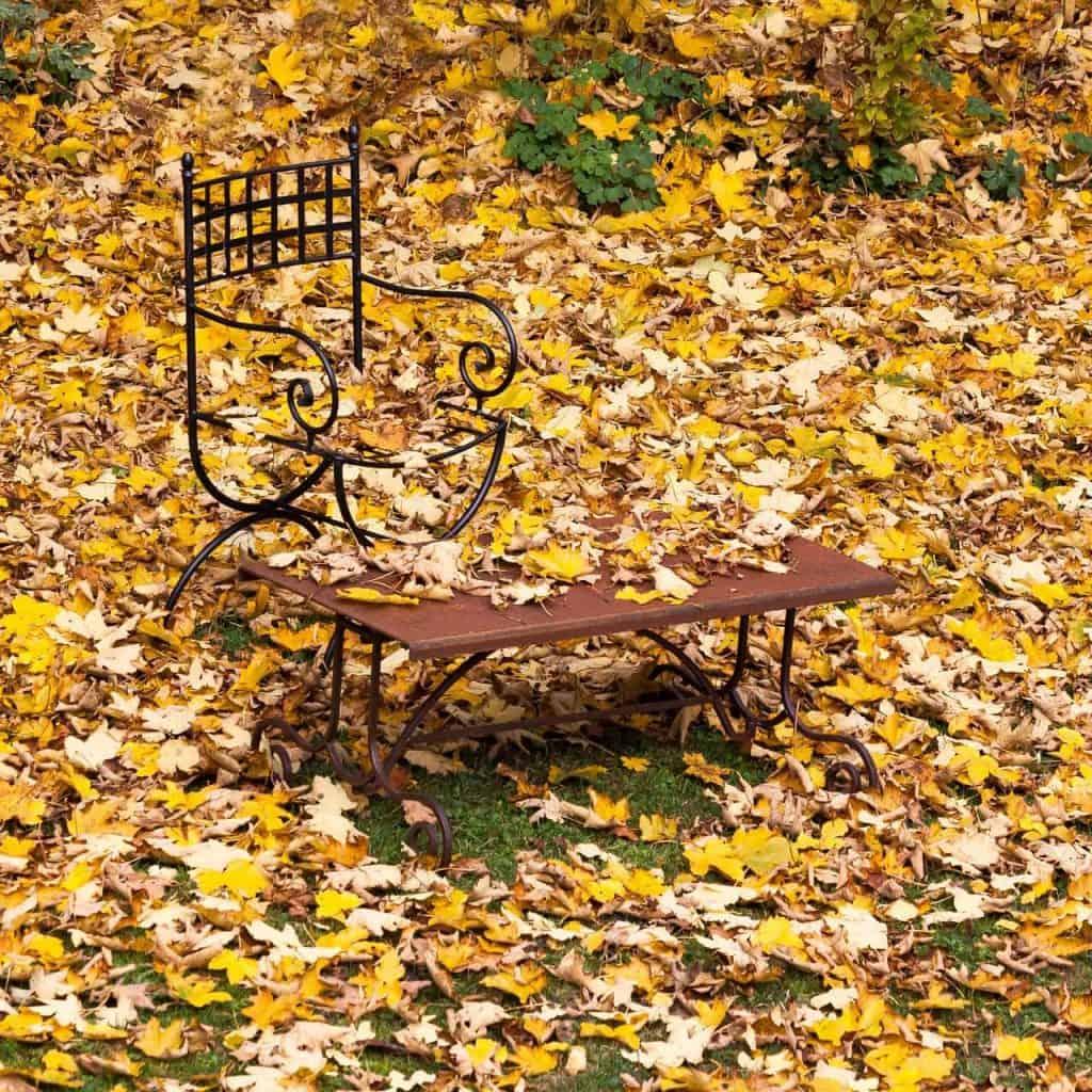 Jede Menge zu tun für Akku Laubsauger: Laub im Garten