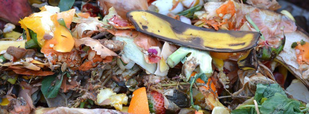 Ein Haufen Biomüll auf einem Kompost