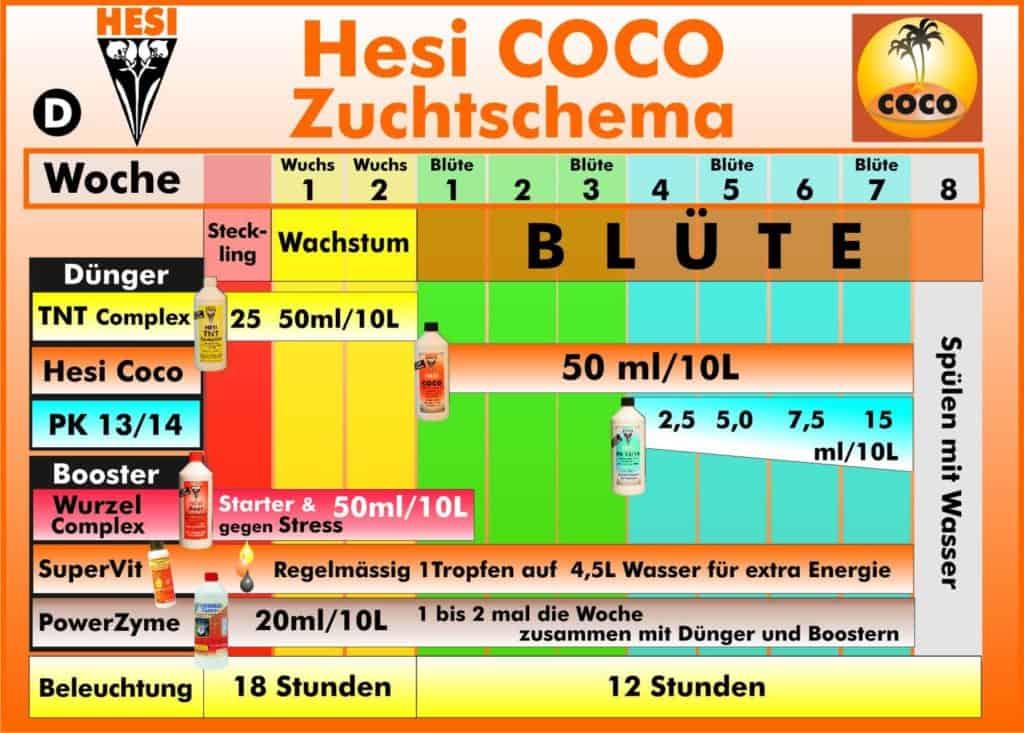 Zuchtschema für Kokos Medien