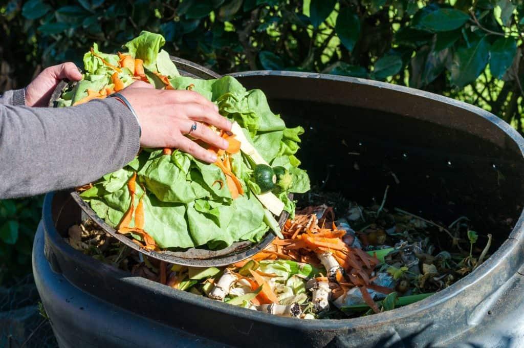 Biomüll wird in Komposter gelegt
