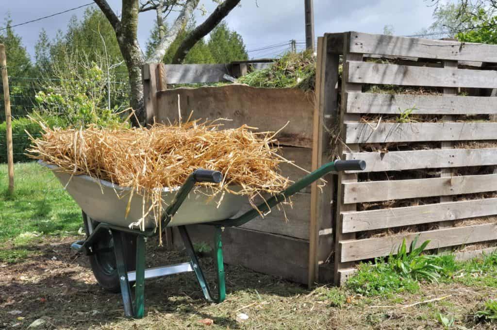 Komposthaufen im halbschatten