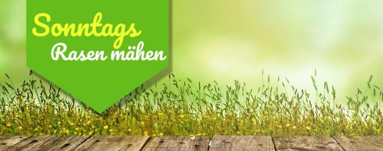 Sonntags Rasen mähen Titelbild