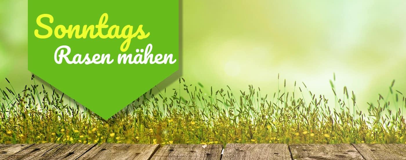 ᐅ Darf Man Sonntags Rasen Mahen ᐅ Eine Antwort