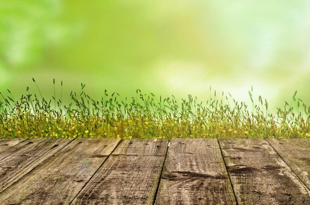 Rasen und Holz