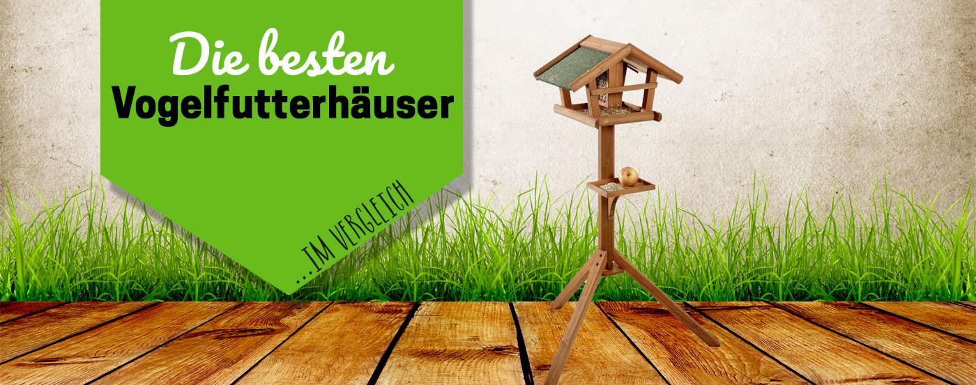 ᐅ Vogelfutterhaus Test 2019 Der Schonste Unterschlupf